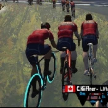 Swift Biker