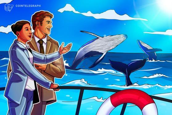 Nuove entità su Bitcoin vicine ai massimi storici: analista segnala 'attività di whale positive'